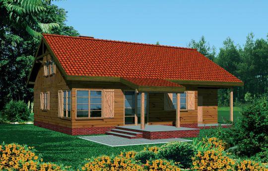 Projekt domu Modrzewiowy - wizualizacja tylna