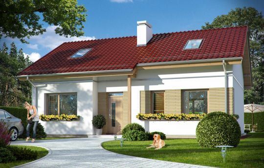 Projekt domu Biedronka 2 - wizualizacja frontu