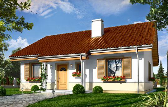 Проект дома Жабка - визуализация, вид спереди